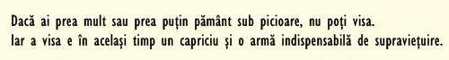 şaman citat 1