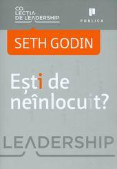 Seth Godin, Ești de neînlocuit
