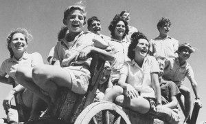 Young Kibbutzniks