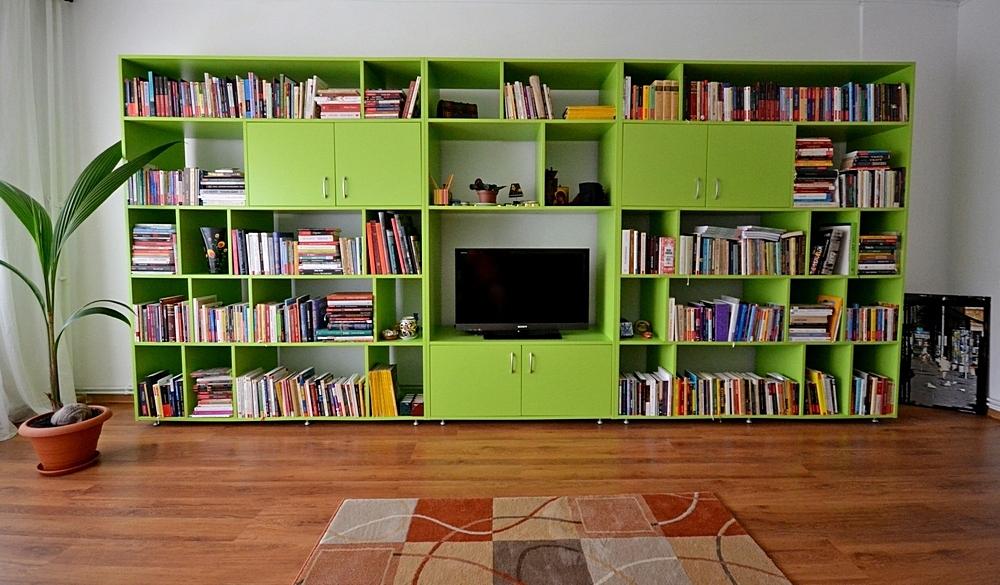 biblioteca_lazarescu
