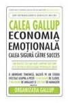 Economia emoţională. Calea sigură către succes
