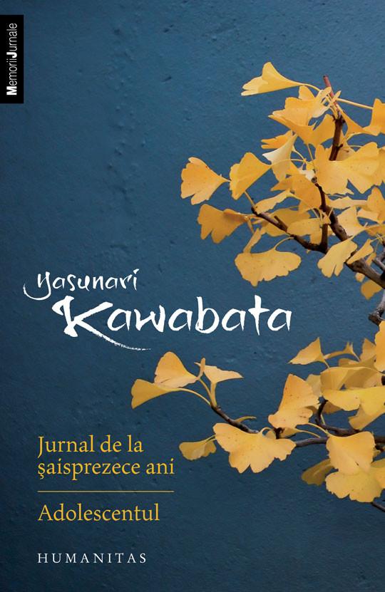 jurnal-de-la-saisprezece-ani-adolescentul_1_fullsize